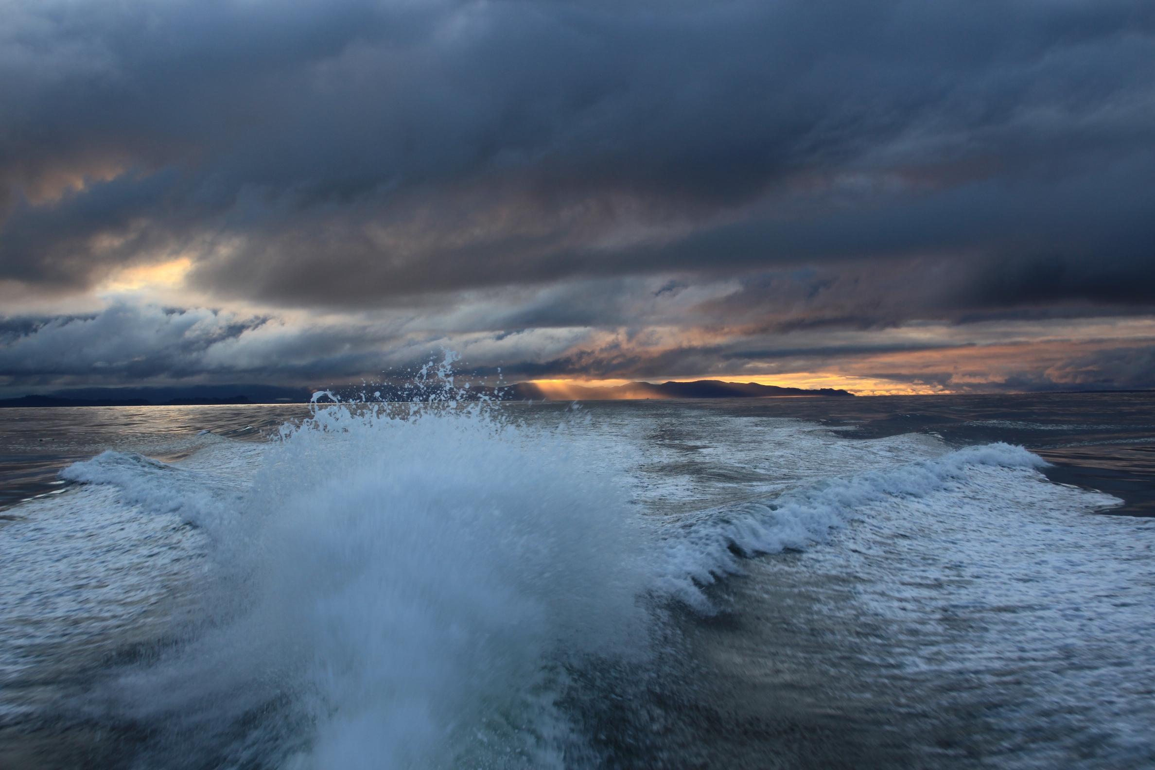 Tuna Dog Offshore Blog